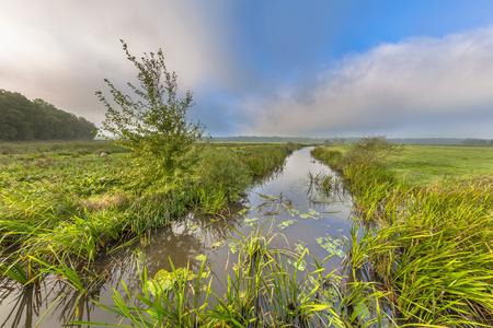 Helle Sommerlandschaft eines Tiefland River Valley mit Nebelöffnung zu tiefen Wolken und starkem Gegenwind in der Nähe von Eelde, Drenthe Niederlande Standard-Bild - 80559469