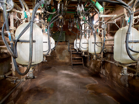 Empty small modern semi-automatic milking parlor stall Stock Photo