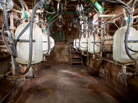 Empty small modern semi-automatic milking parlor stall Zdjęcie Seryjne