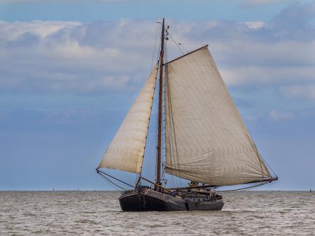 Traditional dutch brown fleet flatbottom sailing boat on the wadden sea