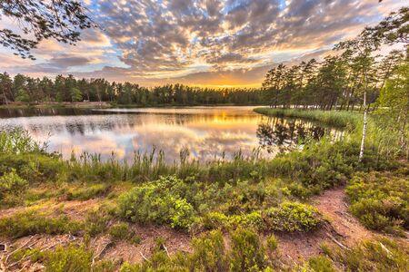 Forest lake in Hokensas Nature reserve, Vastergotland, Sweden
