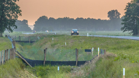 Fences leading to wildlife culvert road crossing providing safe passage for wild animals under a highway in the Netherlands Stock Photo