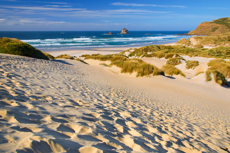 Inviting Beach and dunes at Otago peninsula, New Zealand