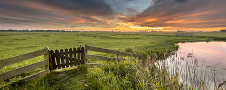 Panorama  gate view of agricultural landscape of dutch countryside in Groningen Netherlands