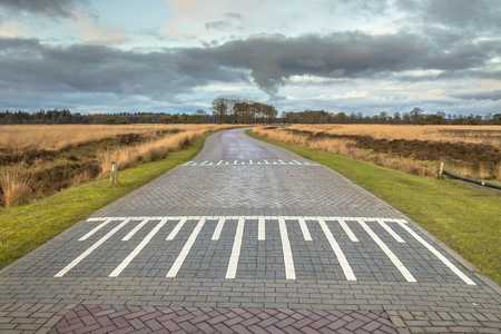 Country road with speed bump in Fiesland, Netherlands