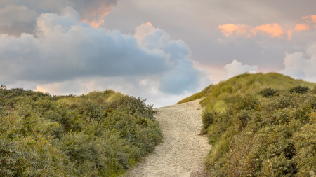 Track throug the dunes to the beach in the province of Zeeland in the Netherlands