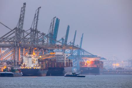 Paysage du port industriel de Rotterdam europoort avec des navires amarrés chargés par des grues Éditoriale