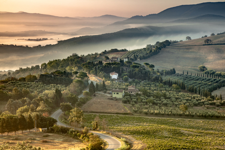 Beautiful foggy Tuscany hill Landscape near Florence on a sunny Morning in august, Italy