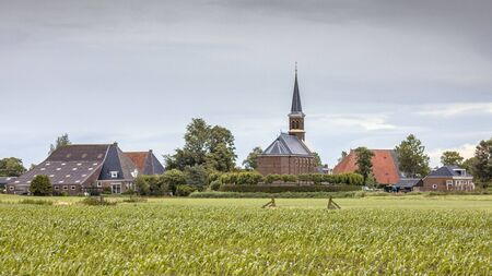 Dutch Hamlet of Warstiens with church and several farm barns in dairy landscape near city of Leeuwarden, Friesland, the Netherlands Stock Photo