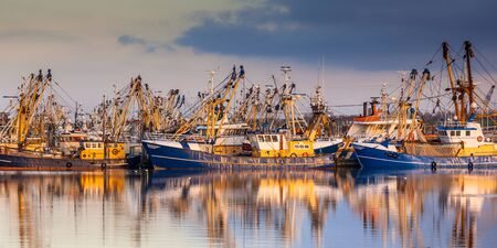 Fishing ships in Lauwersoog. Which harbours one of the biggest fishing fleets of the Netherlands. The fishery concentrates mainly on the catch of mussels, oysters, shrimp and flatfish in the Waddensea