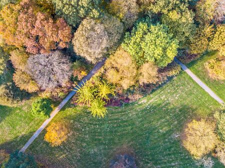 Aerial top down view of city park in october  autumn colors, Netherlands, Europe 版權商用圖片