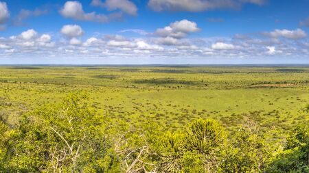 View at Nkumbe viewpoint in Kruger National park South Africa 版權商用圖片