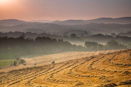 Tuscany Village Landscape near Pisa on a Foggy Morning, Italy