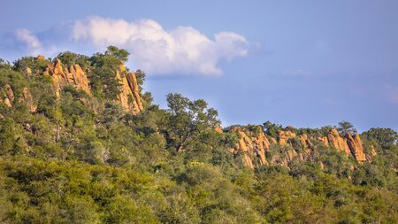 Rhyolitic rocky outcrops or koppie in Kruger national park South Africa 版權商用圖片