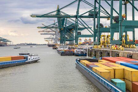 Załadowane statki w ruchliwym porcie w Antwerpii w terminalu kontenerowym z automatycznymi dźwigami i wieloma statkami. Belgia