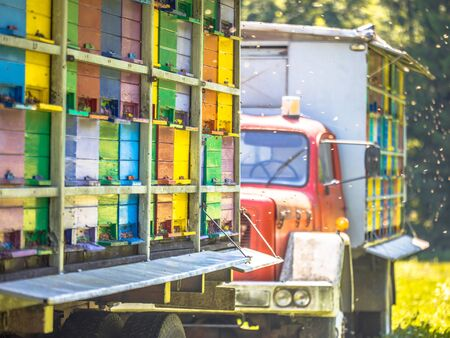 Detail Mobile beehive on truck with colourful panels on sunny day Banque d'images - 130816833