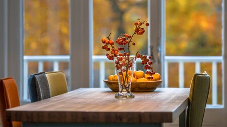 Autumn interior still life scene with red berries, oranges and yellow foliage background Reklamní fotografie