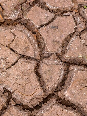 Cracked soil caused by drought as concept for climate change and famine Banco de Imagens