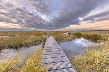 Boardwalk in Tidal Marshland nature reserve Verdronken land van Saeftinghe in Province of Zeeland. Netherlands Reklamní fotografie - 130816969