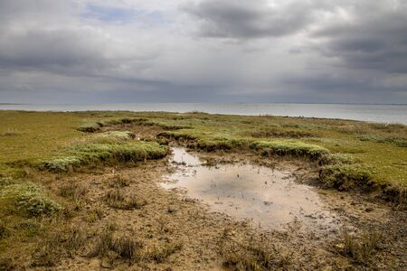 Salth marsh under cloudy conditions on the Frisian Island of Ameland