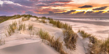 View from dune top over sunset in North Sea from the island of Ameland, Friesland, Netherlands Stockfoto