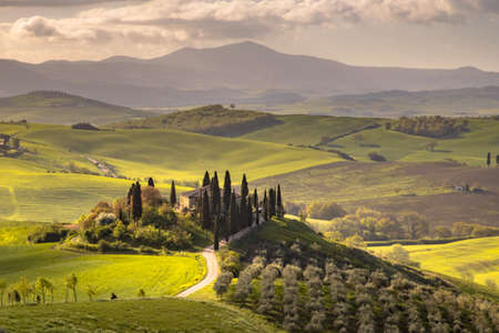 Tuscan countryside near San Quirico d'Orcia on foggy early morning sunrise in Tuscany, Italy, April. 免版税图像