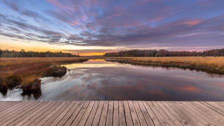 Boardwalk in heathland fen nature reserve landscape in the province of Drenthe, Netherlands