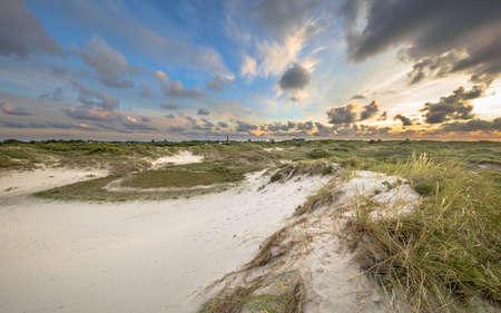 Dune landscape on dutch Wadden island of Schiermonnikoog 免版税图像