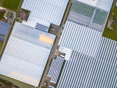 Top down Aerial view of Westland or glass city Greenhouse horticulture area in the Netherlands. One of the biggest food production areas in the world an a huge engine of the dutch economy.