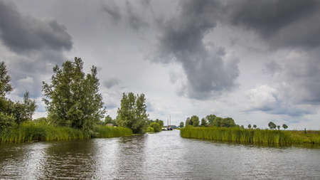 View in canal and Lake shore with already and Typha under cloudy summer sky