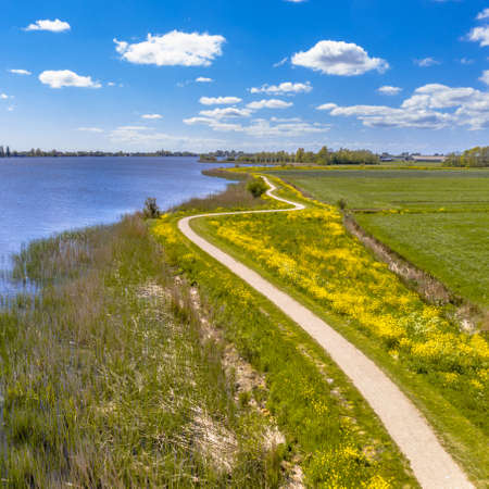 Aerial Springtime scene of dutch river near Boornzwaag. Cycling track on dike meandering throug polder with yellow flowers. Friesland, the Netherlands. Zdjęcie Seryjne