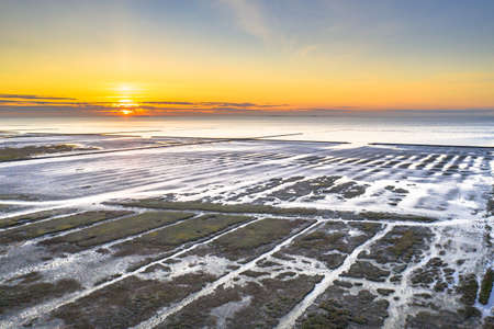 Aerial view over salt marsh plains on the Wadden Sea coast. Uithuizen, Groningen Province. Zdjęcie Seryjne