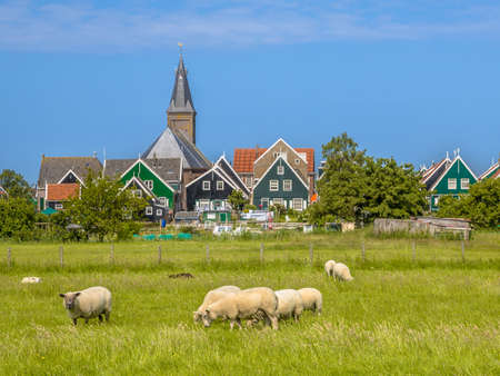 Traditional dutch Village scene with colorful wooden houses and church with sheep on the foreground on the island of Marken in the Ijsselmeer or formerly Zuiderzee, the Netherlands Stockfoto