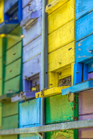 Colorful beehives in many different colors on truck Zdjęcie Seryjne