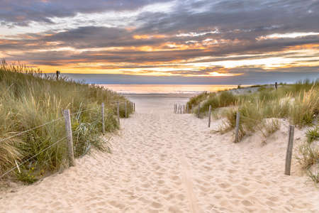 Landscape view of sand dune on the North sea coast at sunset near Wijk aan Zee, Noord Holland Province, the Netherlands. Landscape scene of european nature. Archivio Fotografico