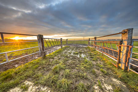 Sunset over gate in lowland meadow farmland in Sint Jansklooster, Overijssel, Netherlands.