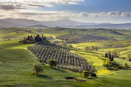 Tuscan countryside near San Quirico d'Orcia on foggy early morning sunrise in Tuscany, Italy, April. Archivio Fotografico