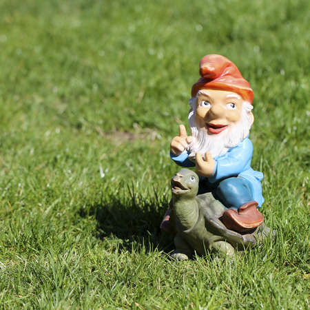 ugly mouth: Little Gnome on Turtle escaping over green grass field