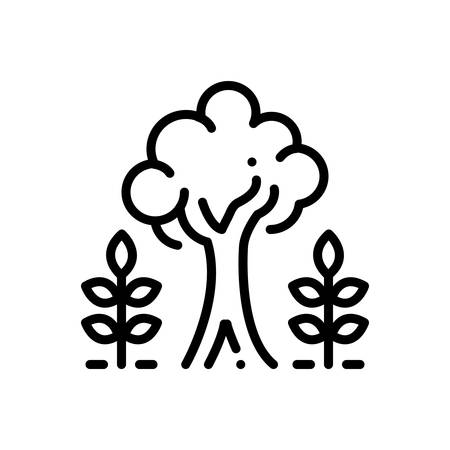 Icon for maturity,tree