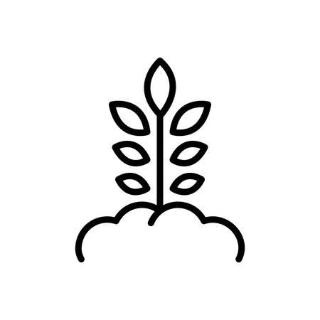 Icon for origination,grow