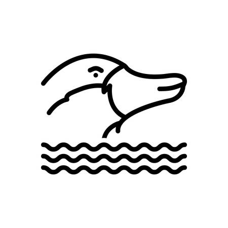 Icon for platypus, nocturnal