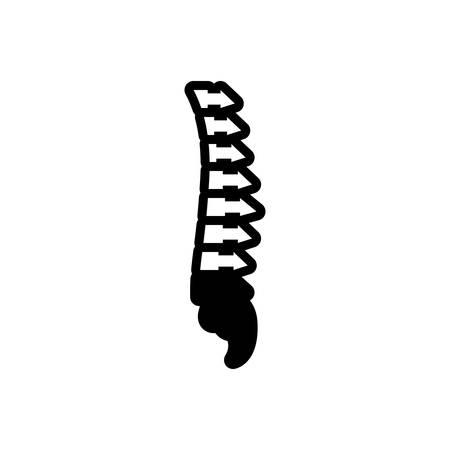 Icon for vertebra,anatomy
