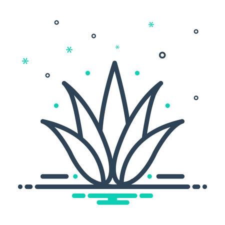 Icon for agave,plant Ilustração