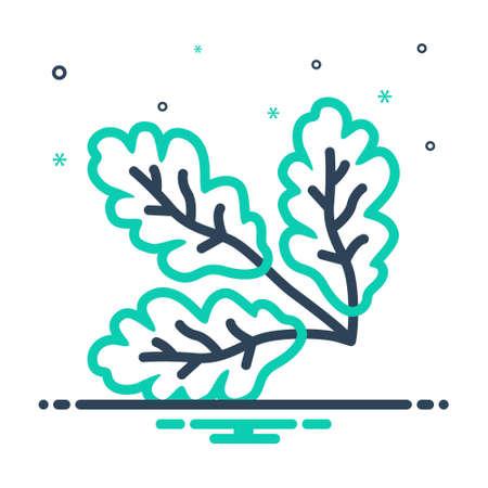 Icon for oak,leaf Illustration