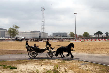 contributed: 1850 representation of the Italian coach who carried public figures who contributed to the unification of Italy in the 1850 at Roma Cavalli horse fair in Rome, Italy on April 2011.