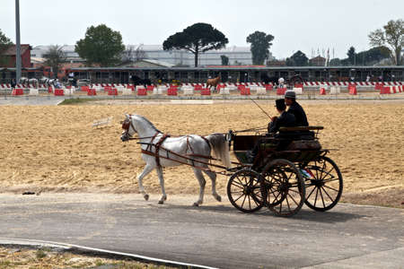 1850 representation of the Italian coach who carried public figures who contributed to the unification of Italy in the 1850 at Roma Cavalli horse fair in Rome, Italy on April 2011. Stock Photo - 9386527