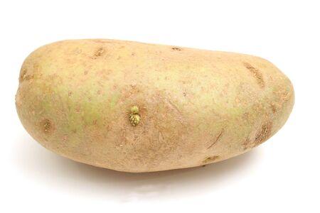 single potato on white