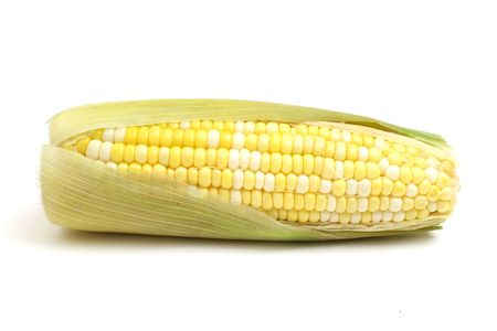 consume: ear of corn on white