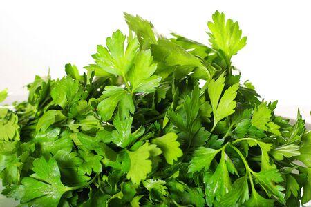 fresh parsley isolated on white photo