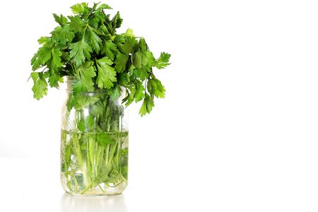 fresh parsley in a jar of water